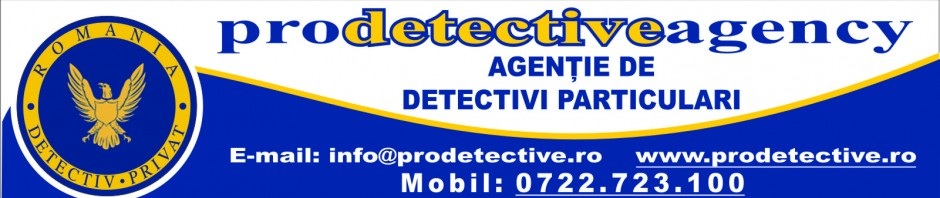 cropped-banner-new-pro-detective.jpg